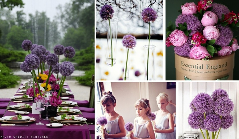 allium wedding flower ideas